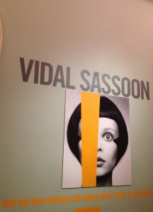 sassoon somerset vs