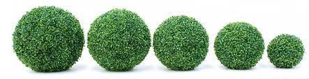 topiary sizes